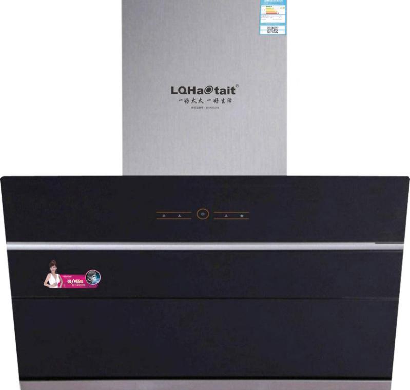 LQY-C31双电机